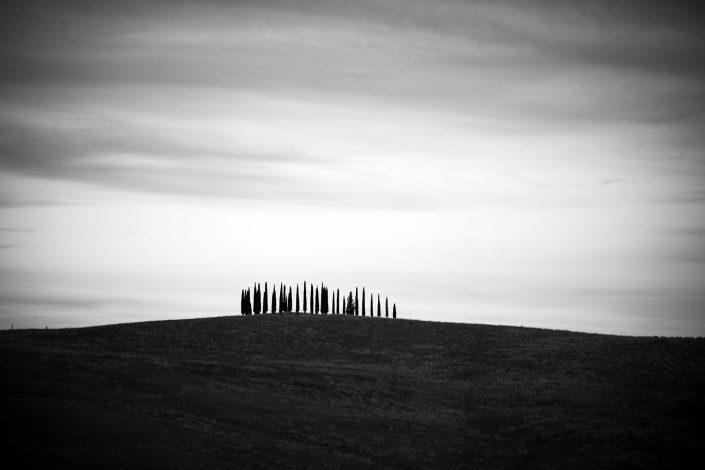 Toscana minimalism landscape Alex Axon Photo