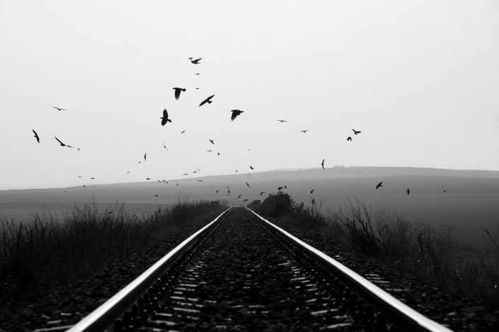 Road to Perdition Alex Axon Photo