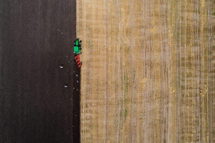 Tractor and Seagulls Alex Axon Drone Photo