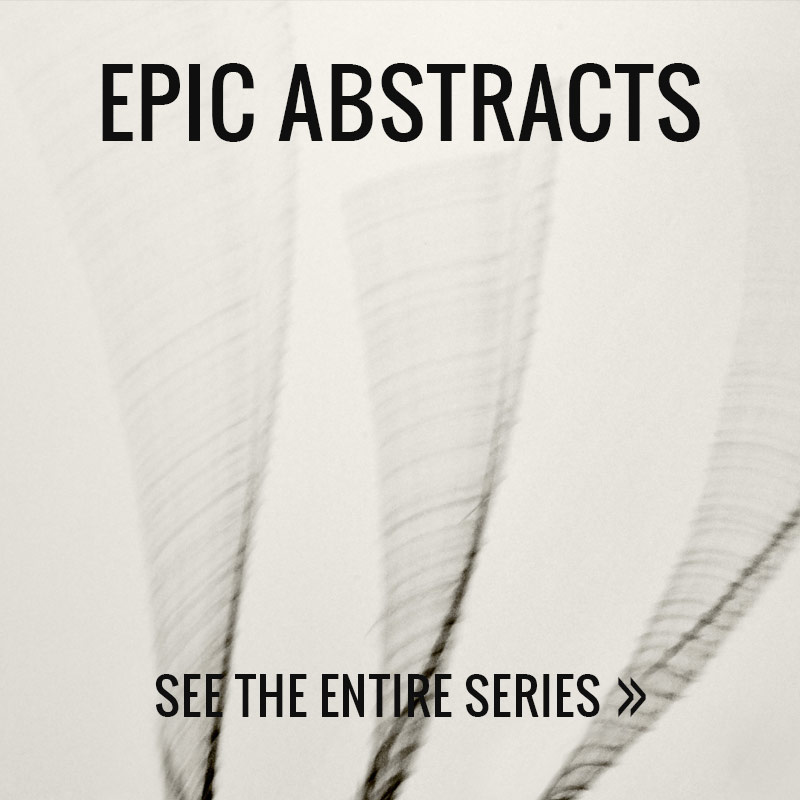 Epic Abstracts Photo Series