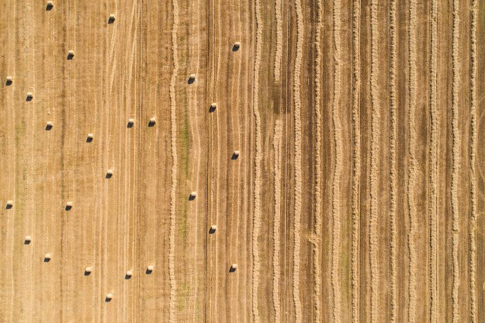 Agriculture Drone Photography Alex Axon